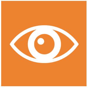 vision-orange
